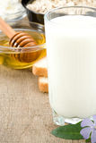 Milk products and cheese on wood Stock Photos