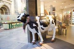 Milk publicity. Fashion cow for milk publicity in Granada, Spain stock image
