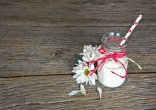 Milk in retro milk bottle with straw Royalty Free Stock Image
