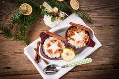 Milk rice with cinnamon Royalty Free Stock Images