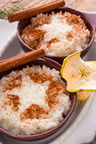 Milk rice with cinnamon Royalty Free Stock Image