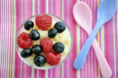 Milk Rice Pudding Royalty Free Stock Images