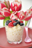 Milk Rice Pudding Royalty Free Stock Photos