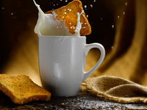 Milk and rusks Royalty Free Stock Photos