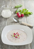 Milk soup with radish and cucumber Stock Photo