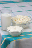 Milk, sour cream and cottage cheese. In glass on check tablecloth Royalty Free Stock Photo
