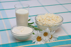 Milk, sour cream and cottage cheese. In glass on check tablecloth, with three daisies Stock Photo