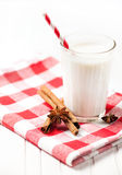 Milk with spices Royalty Free Stock Images