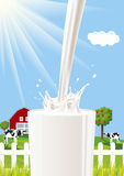 Milk splash Royalty Free Stock Photography