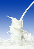 Milk splash Stock Photos