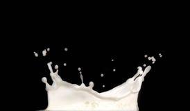Milk splash Stock Photos