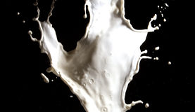 Milk splash Stock Photo
