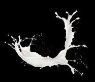 Milk splash. Isolated on black background Stock Photography