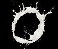 Milk splash Stock Image