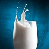 Milk splash. Against blue backround Stock Photo