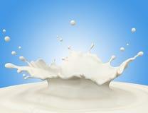 Milk splash. Against blue background Royalty Free Stock Photography