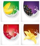 Milk splash with banana, black currant, cherry, vanilla flower. Milk splash with banana, black currant, cherry, vanilla Royalty Free Stock Image