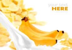 Milk splash with banana on corn flakes Stock Photos