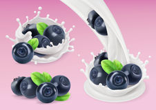 Milk splash and Blueberry. 3d vector object. Natural dairy products Stock Image