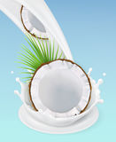 Milk splash and coconut. 3d vector object Royalty Free Stock Photography