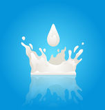 Milk Splash Crown with Droplet and Reflection Royalty Free Stock Images
