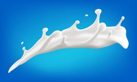 Milk splash 3d vector illustration. Vector realistic illustration for your design needs Royalty Free Stock Photos