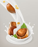 Milk splash and hazelnuts. 3d vector object. Natural dairy products Royalty Free Stock Images