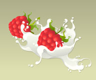 Milk splash with raspberries. Stock Photo