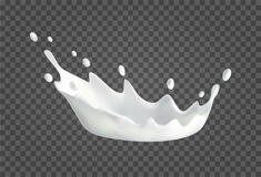 Milk splash realistic illustration. Splash of milk with drops. 3d Realistic liquid illustration. Vector drink on transparent background. Natural dairy products Royalty Free Stock Photos