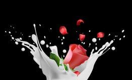 Milk splash with rose and petals royalty free illustration