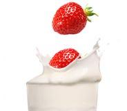 Milk splash with strawberry Stock Image