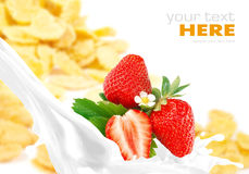 Milk splash with strawberry on corn flakes Royalty Free Stock Photos