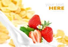 Milk splash with strawberry on corn flakes Royalty Free Stock Photos