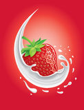 Milk splash with strawberry Royalty Free Stock Images