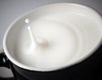 Milk splashing Royalty Free Stock Photos