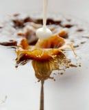 Milk splashing into coffee Stock Photos