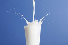 Free Milk Splashing In Glass Stock Photo - 9471570