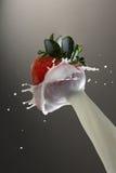 Milk splashing on strawberry Royalty Free Stock Images