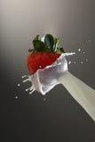 Milk splashing on strawberry Royalty Free Stock Photography