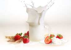 Milk and strawberry on a white background, milk splash in a tran Stock Image
