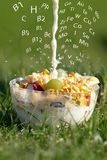 Milk stream flowing in a bowl with fruit Royalty Free Stock Images