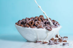 Milk stream jet pouring into a bowl with chocolate flakes in the form of rings, splashes of milk on a blue backgro Royalty Free Stock Photo