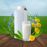 Milk and sunny spring field Royalty Free Stock Photos
