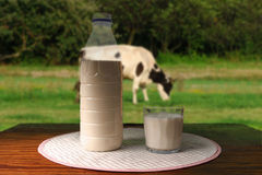 Milk on a Table Royalty Free Stock Image