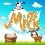 Milk tag with cow and pail on green grass Stock Images