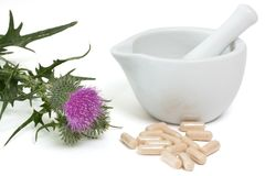 Milk thistle capsules. Milk thistle with capsules near mortar and pestle on white background stock photos