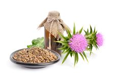 Milk thistle oil with flowers and seeds. stock photography