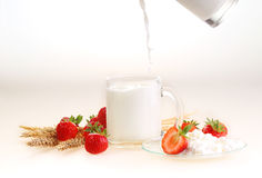 Milk in a transparent mug and cottage cheese ч a strawberry on. A white background, milk a stream flows in a mug stock photo