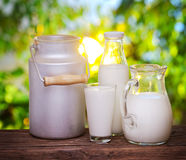Milk in various dishes. Royalty Free Stock Photos