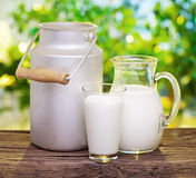 Milk in various dishes. Stock Photos